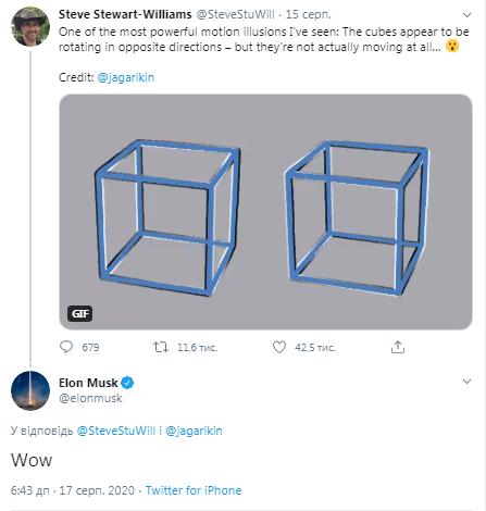 Ілон Маск відреагував на оптичний обман