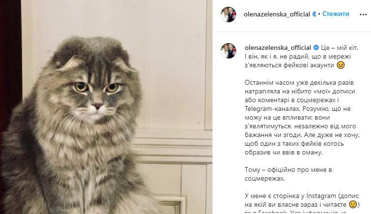 Зеленская предупредила о фейковых страницах в соцсетях