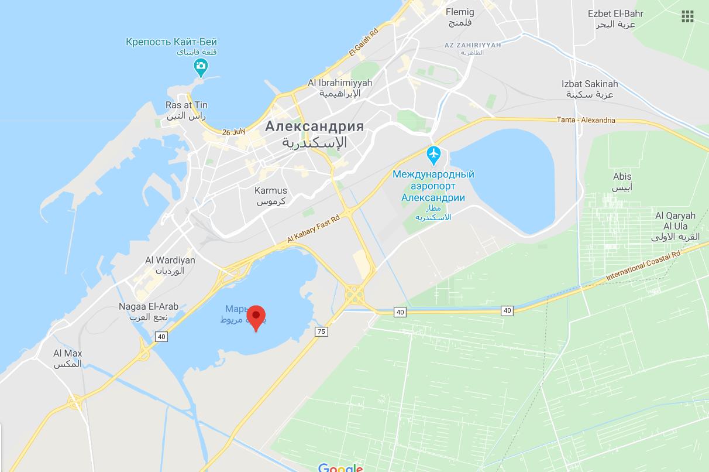 В Египте в ДТП погибло 8 человек