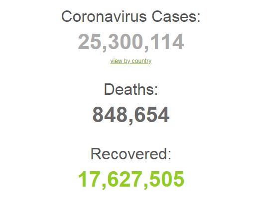 Коронавирусом заразились более 25 млн человек в мире.