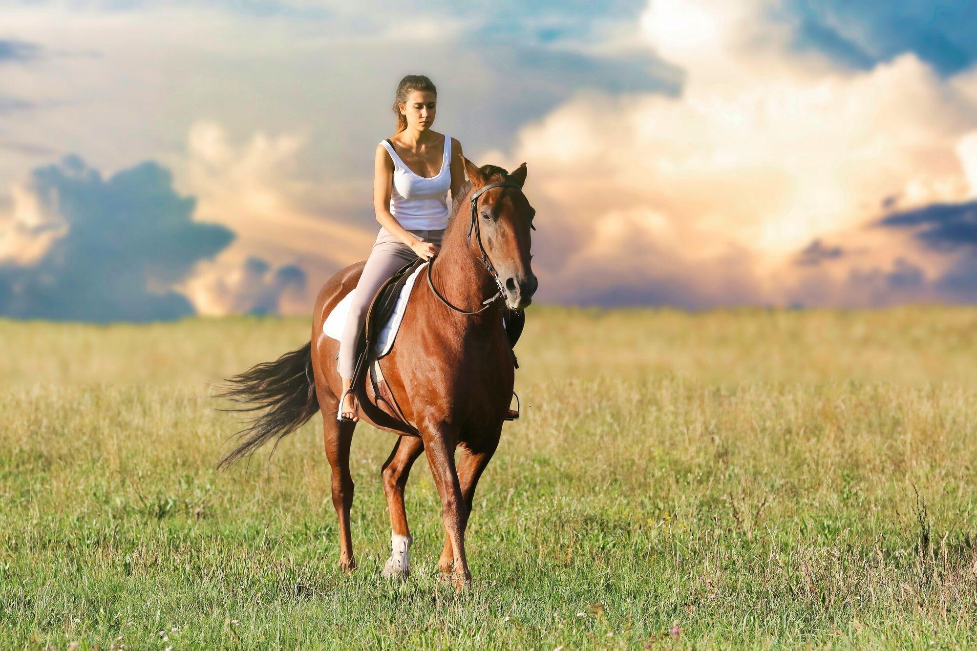 В Лошадиный праздник лошадей старались не изводить работой.