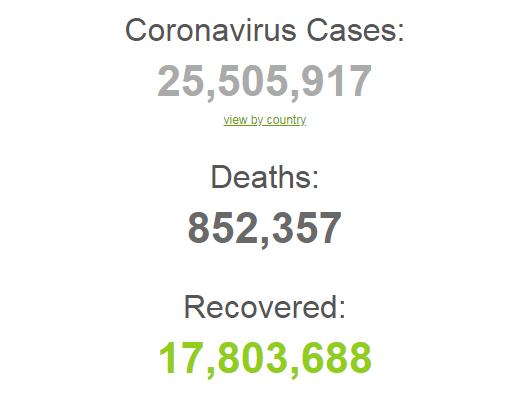 Коронавирусом заразились более 25,5 млн человек в мире.
