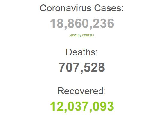 Коронавирусом заразились более 18,8 млн человек в мире