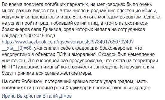 В Одеській області град убив 10 лелек, один птах осліп. Фото