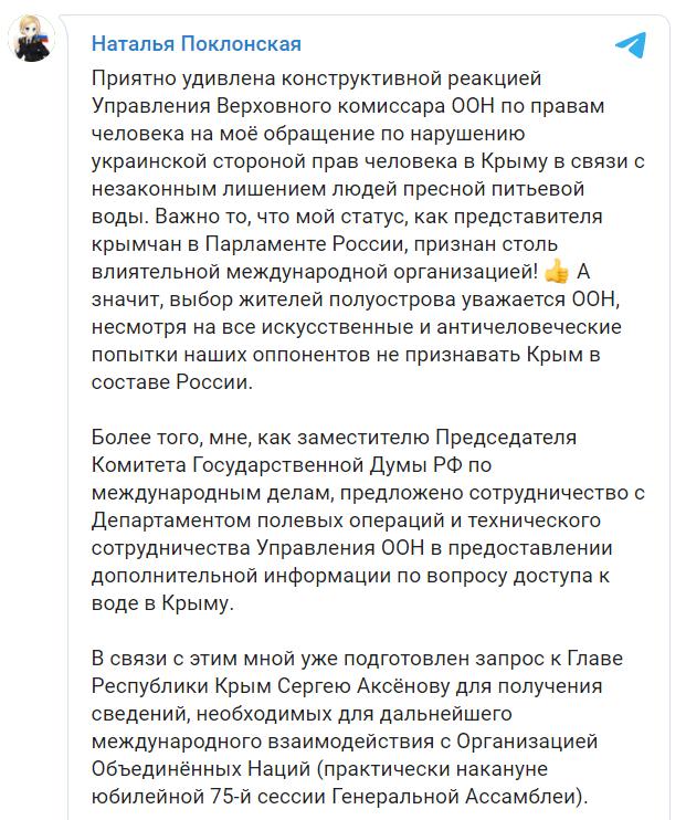 Поклонская пожаловалась на Украину в ООН