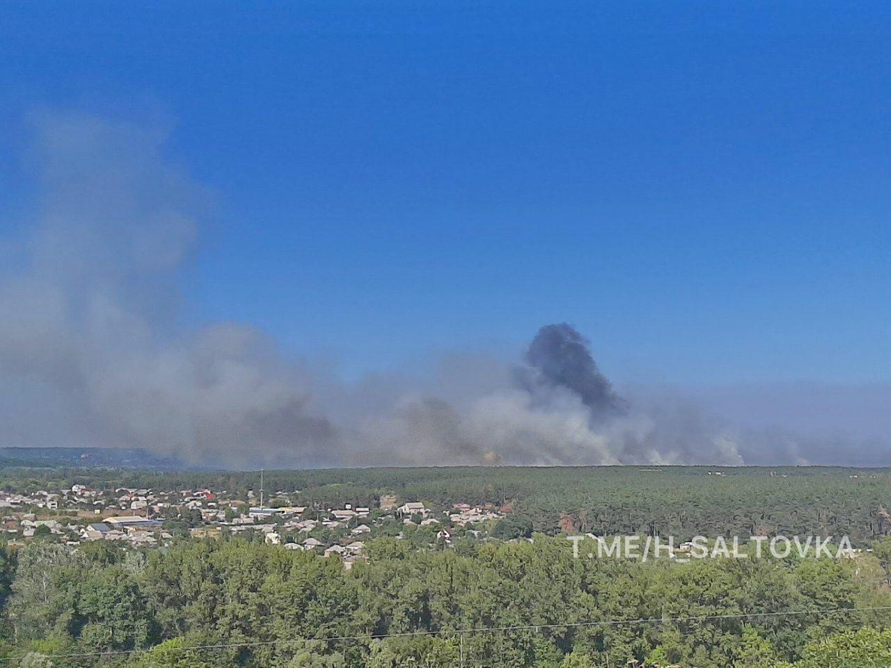 Лесной пожар на Харьковщине виден издалека.