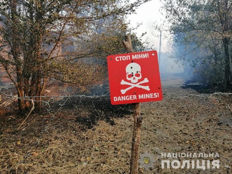 В Луганской области вспыхнули лесные пожары.