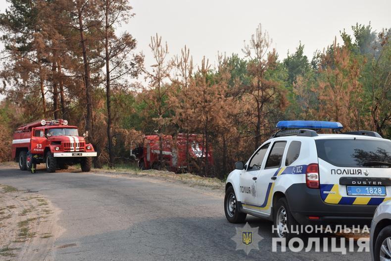 В Луганской области тушат лесные пожары.