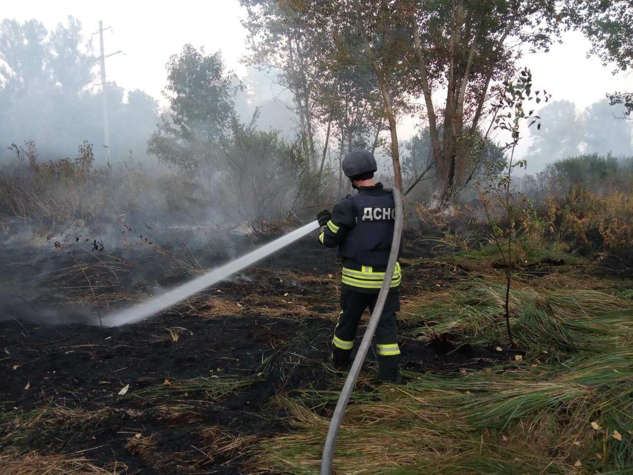 В Луганской области вспыхнул пожар на площади 80 га.
