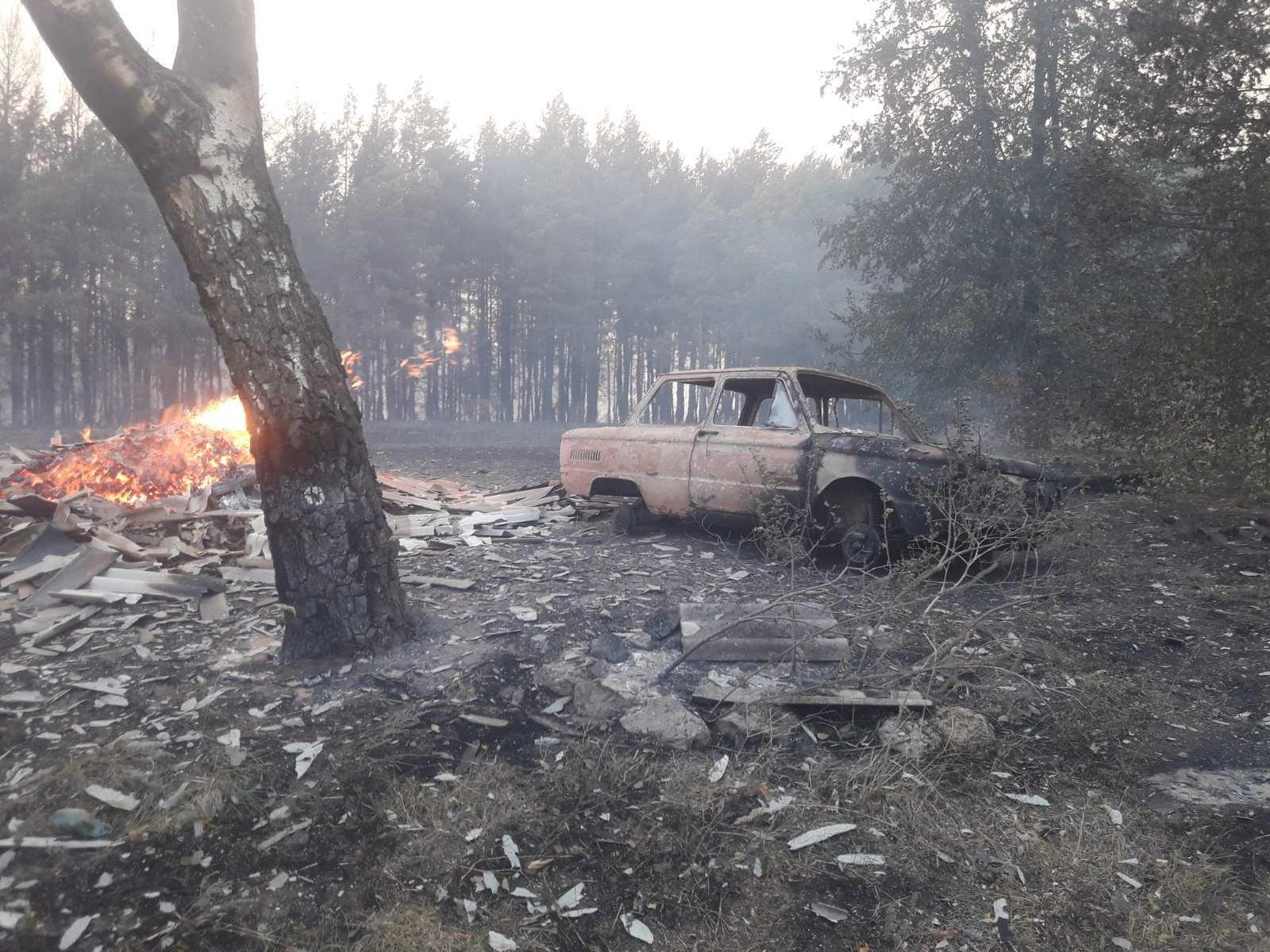 Лісова пожежа в Харківській області
