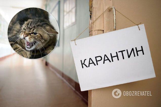 Под Киевом ввели еще один карантин. Иллюстрация