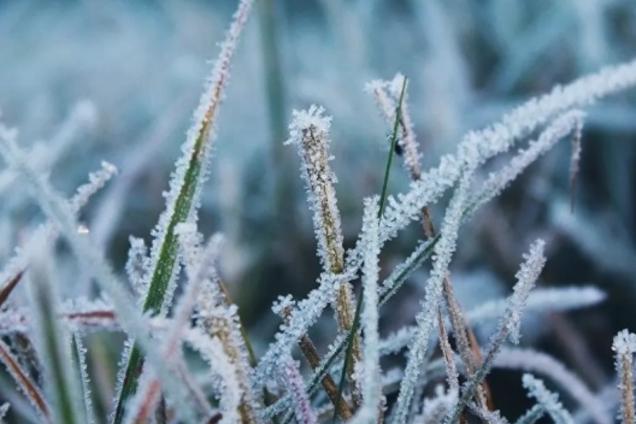 В Україні сильно похолодає: вдарять заморозки