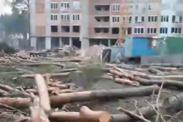 """В Ирпене застройщик повалил лес в зеленой зоне: активисты """"отомстили"""""""