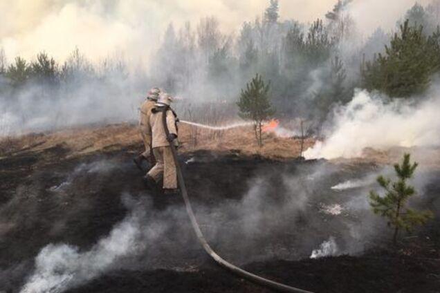 У МВС назвали пожежі на Київщині спланованою диверсією