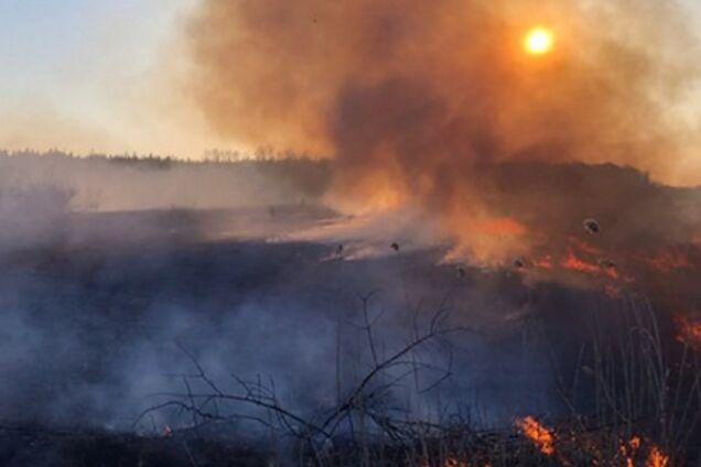 Пожары на Киевщине. Иллюстрация