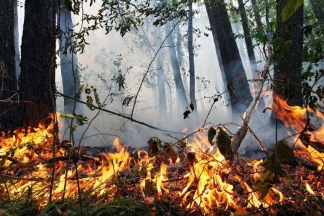 Рятувальники оголосили високу пожежну небезпеку
