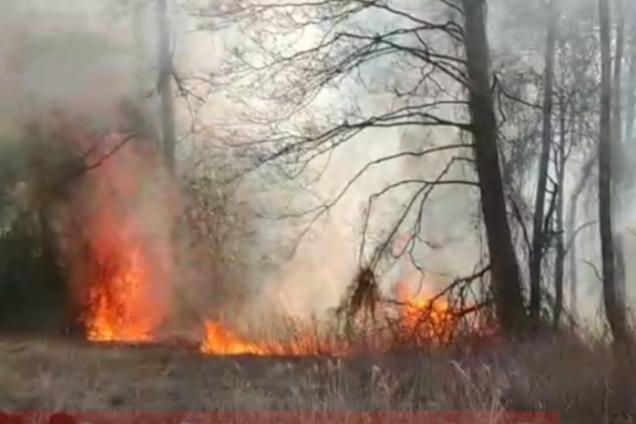 На Київщині спалахнула ще одна серйозна пожежа