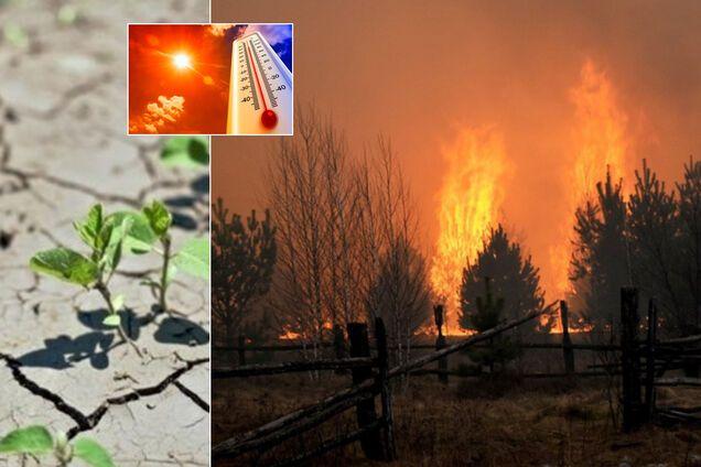 Україну чекають засухи і пожежі