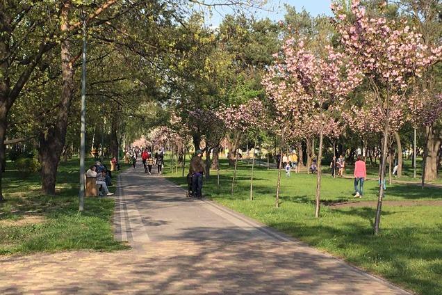 В Киеве массово ринулись в парки с детьми