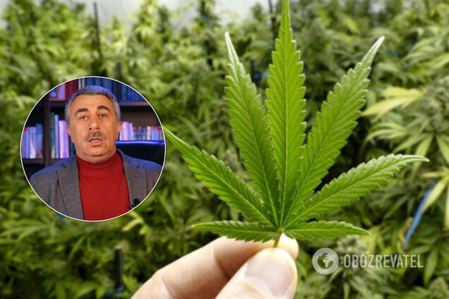 Чи допомагає марихуана хворим на коронавірус: Комаровський дав відповідь