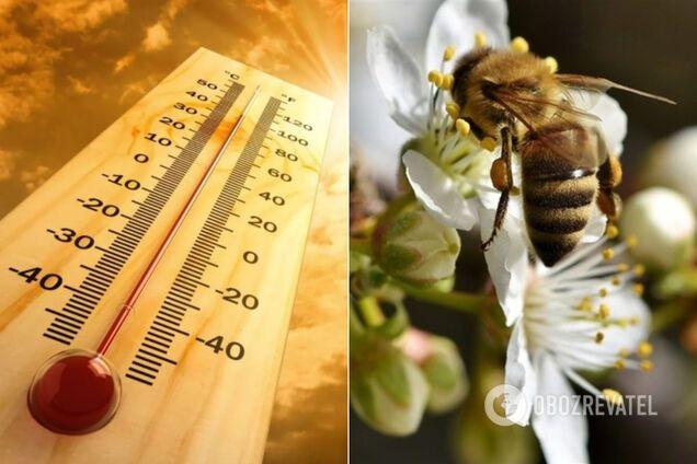 Погода летом 2020: метеоролог предупредила о жаре и засухе
