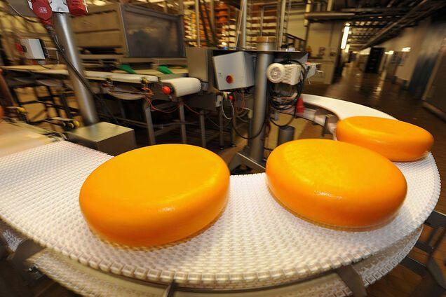 Сир зі штучною кіркою