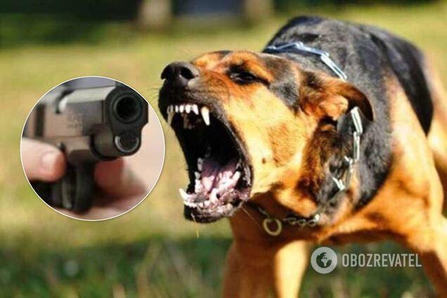 В Одесі поліцейські стріляли в собаку