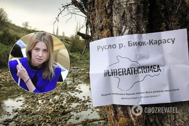 Наталья Поклонская обратилась в ООН из-за неподачи воды в Крым