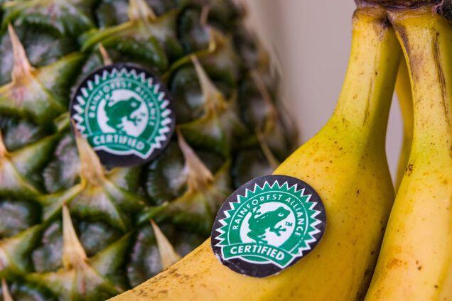 Наклейки на фруктах