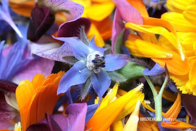 Пелюстки фіалки, червоної троянди, акації, апельсина, гвоздики, жасмину входять до складу квіткового лікеру
