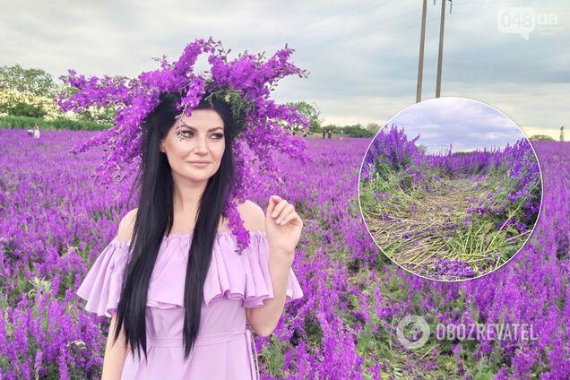 """""""Фиолетовое поле"""" превратилось в настоящую фотомекку"""