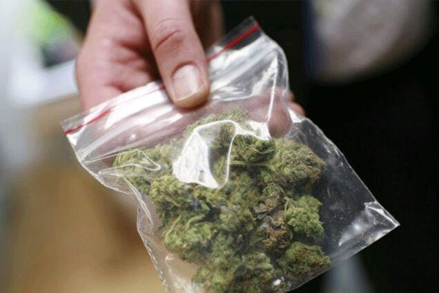 У Тернополі миші з'їли марихуану-речовий доказ