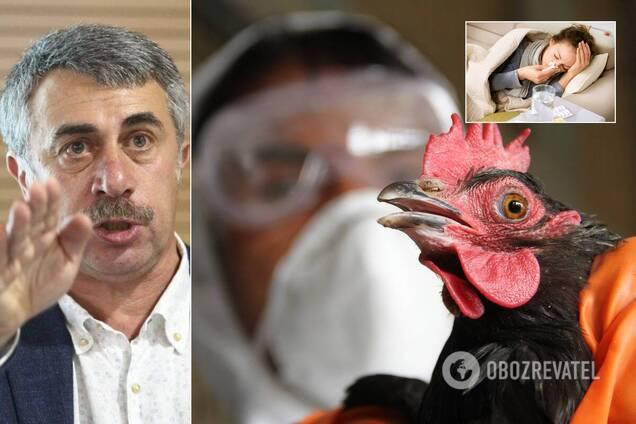 Комаровский объяснил отличие птичьего и свиного гриппа от человеческого