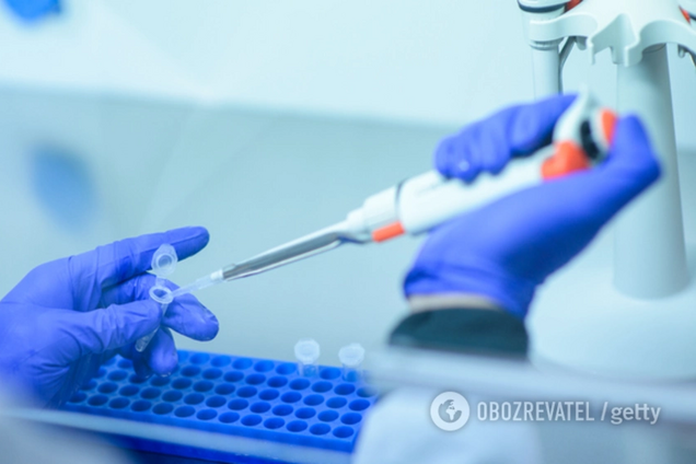 Новый штамм вируса свиного гриппа может вызвать пандемию