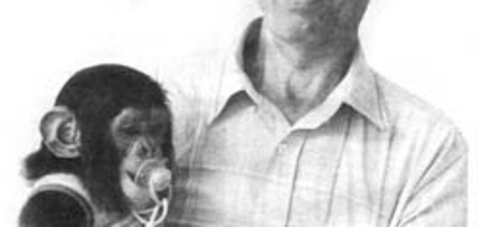 Як рятували шімпанзениша Чарлі