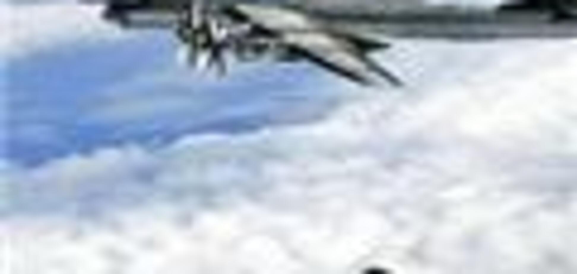 В Абхазии сбили самолет-разведчик Грузии