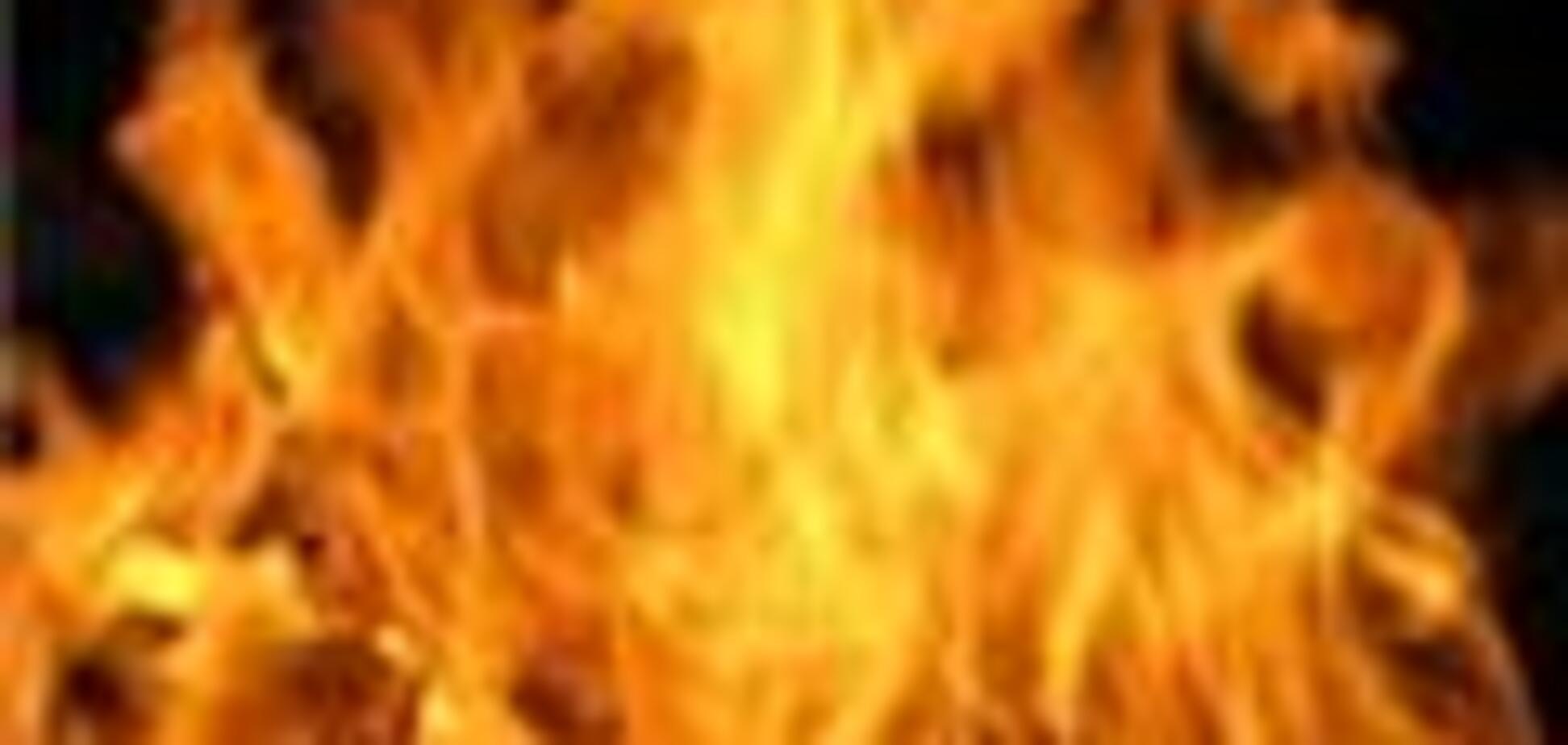 Лесные пожары окружили крупный нефтепровод