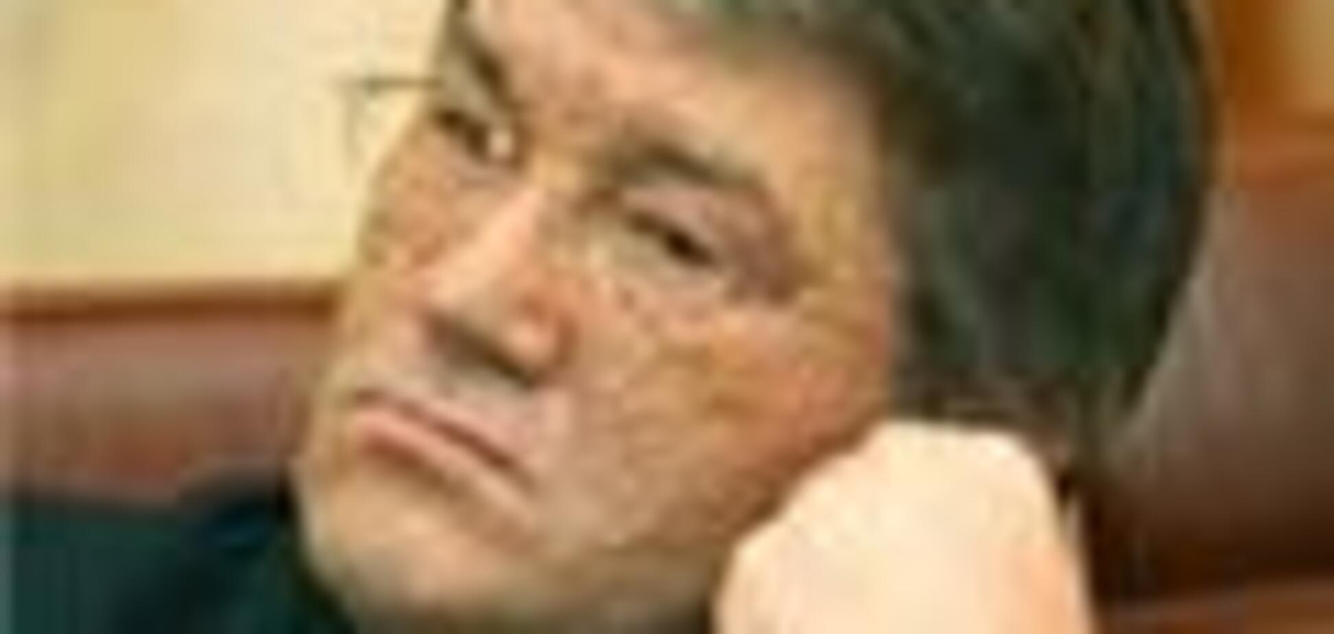 Ющенко рассказал Австрии об Украине