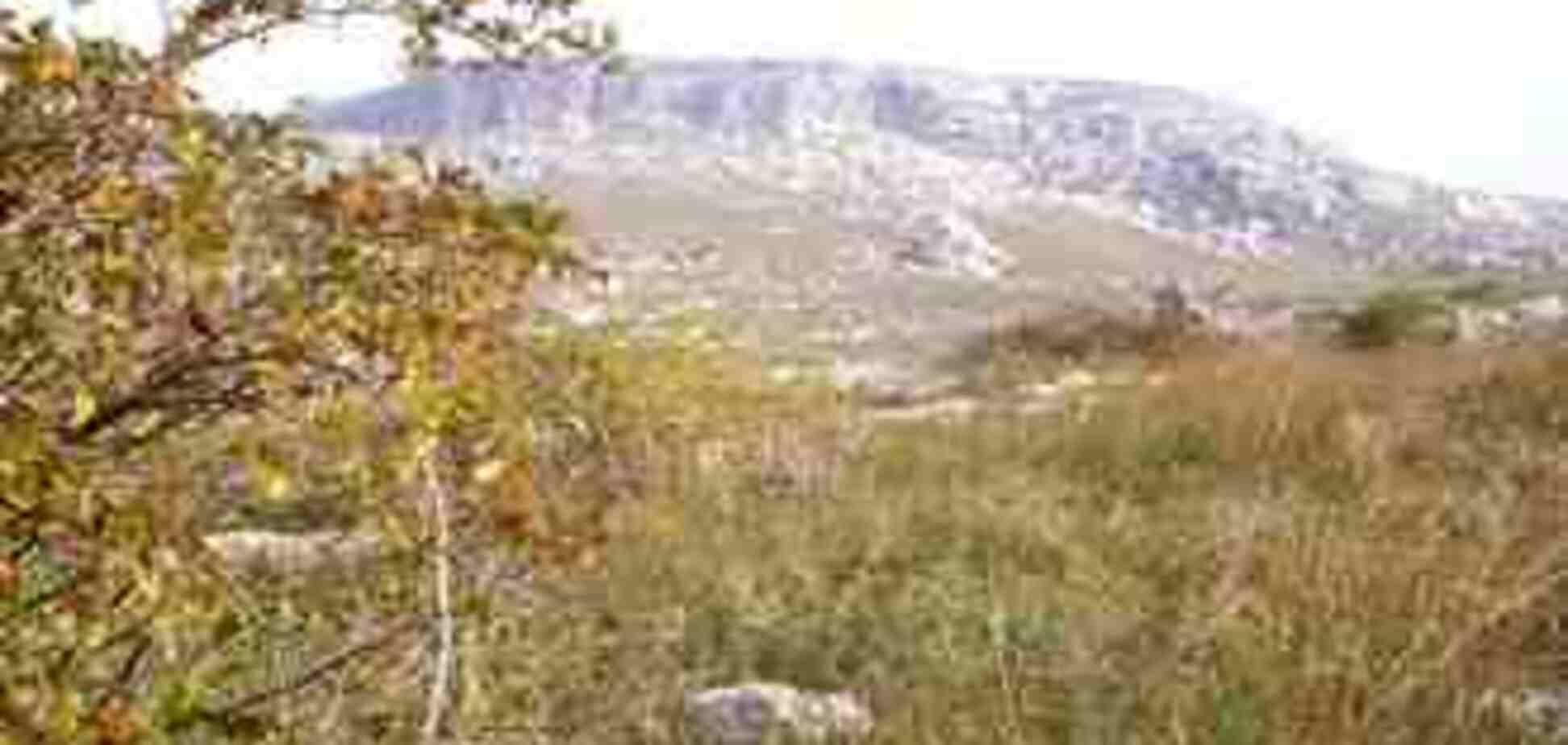 В крымском заповеднике сгорело 500 га травы