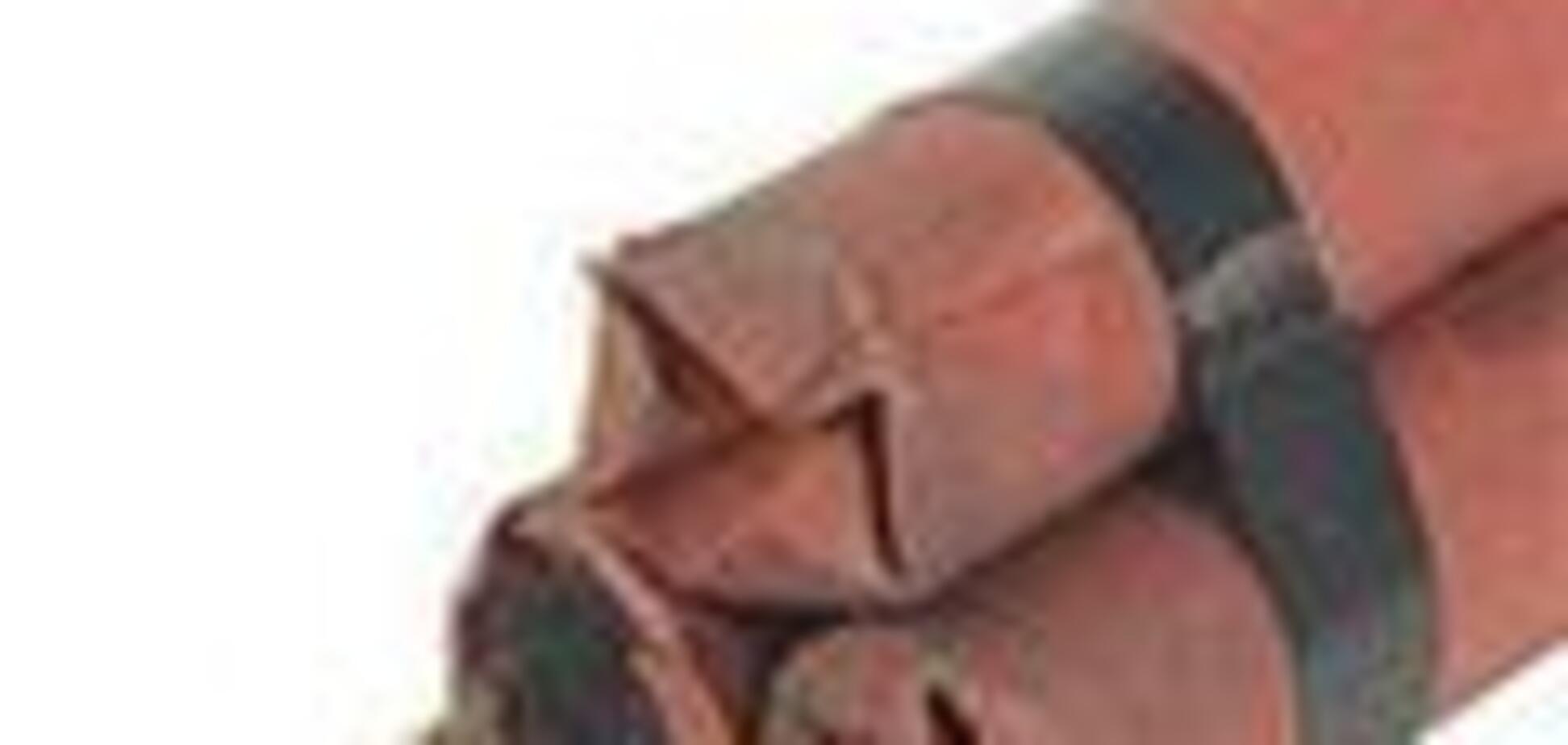 Пасажир закарпатського автобуса віз дві кг тротилу