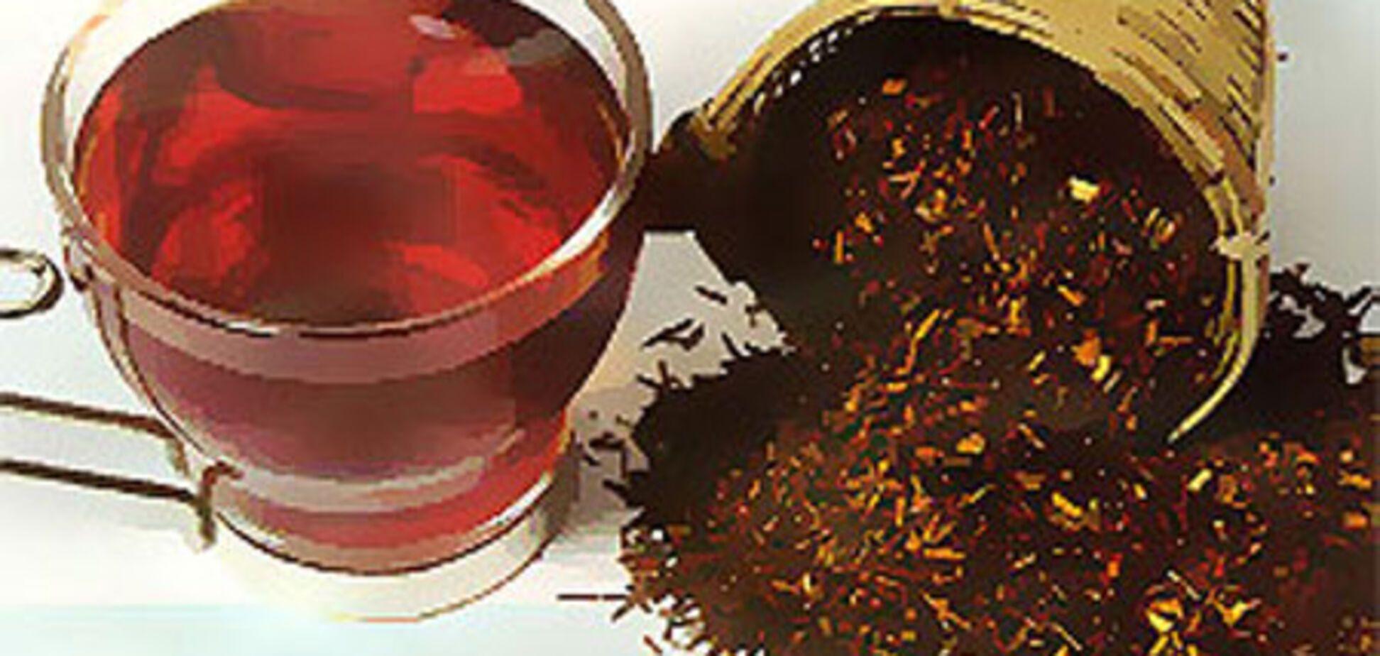 Ройбос — африканский чай