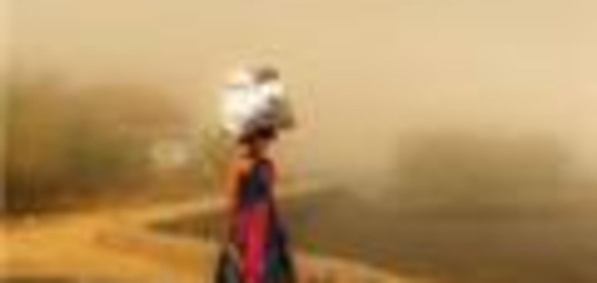 Число жертв жары в Индии достигло 130 человек