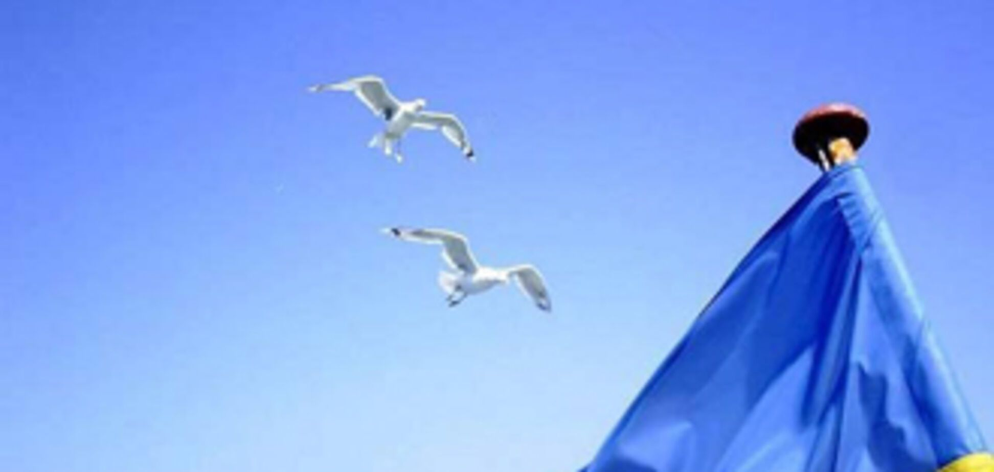 Симоненко против празднования Дня независимости Украины