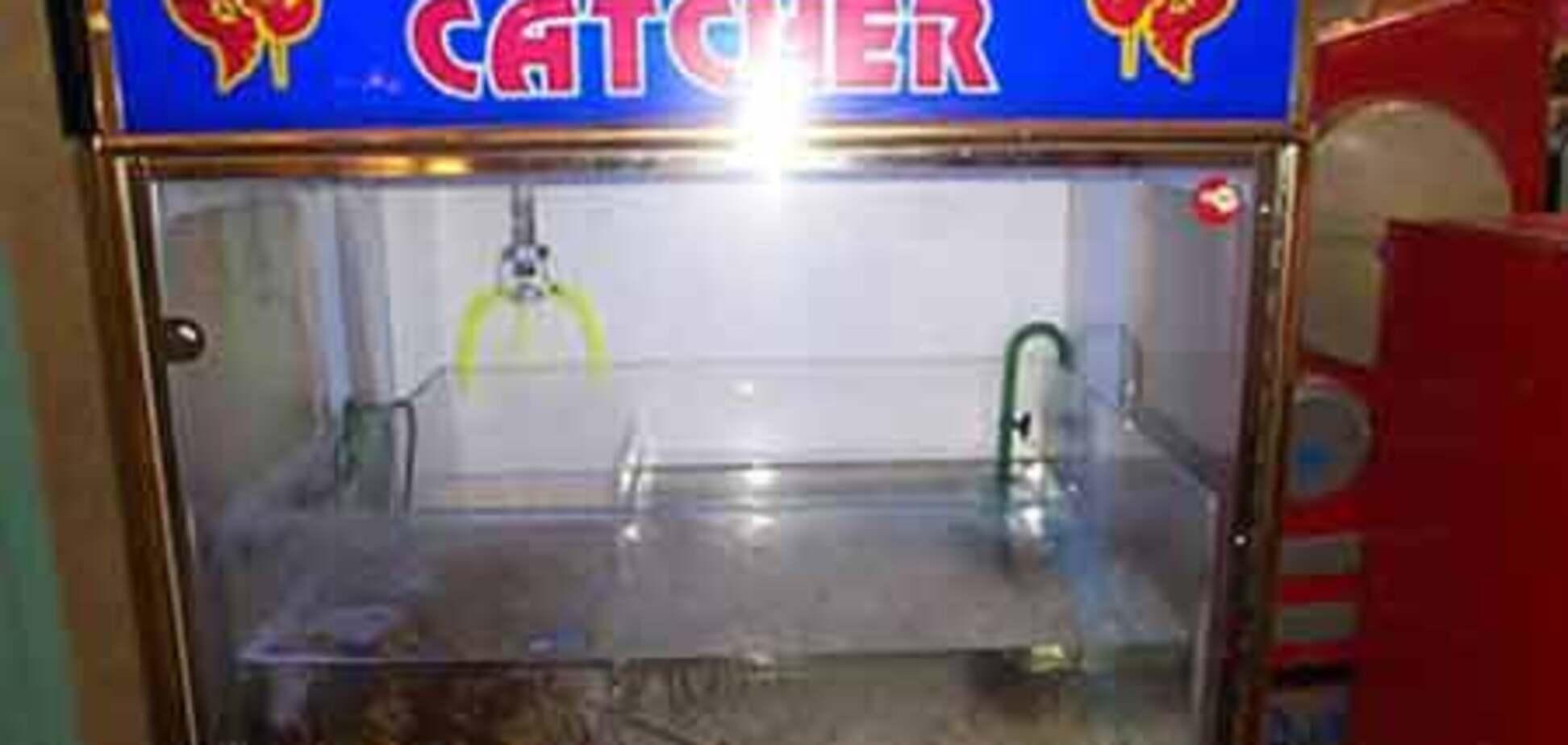 Ловля омаров в игровом автомате