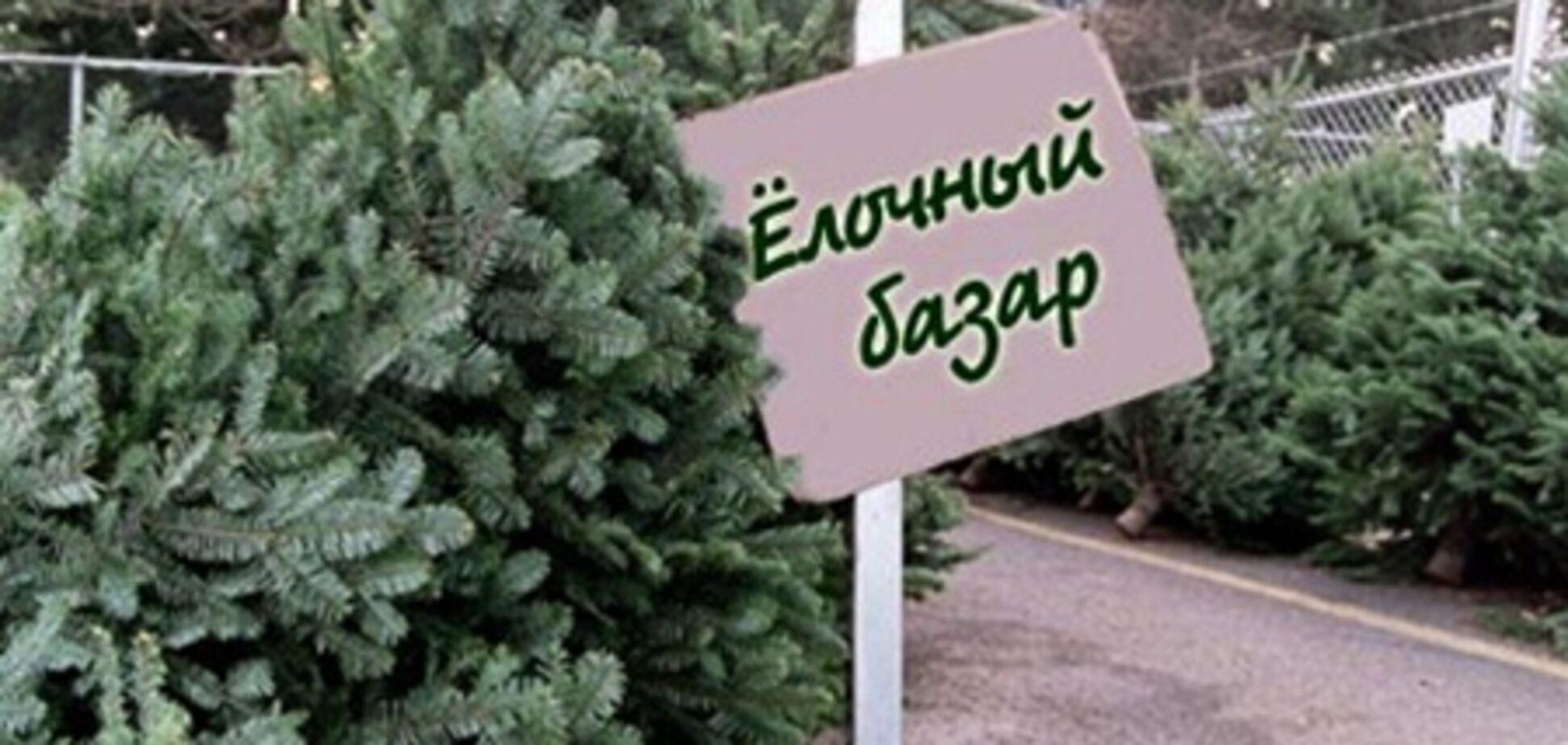 Осторожно! Новогодняя елка таит в себе опасность