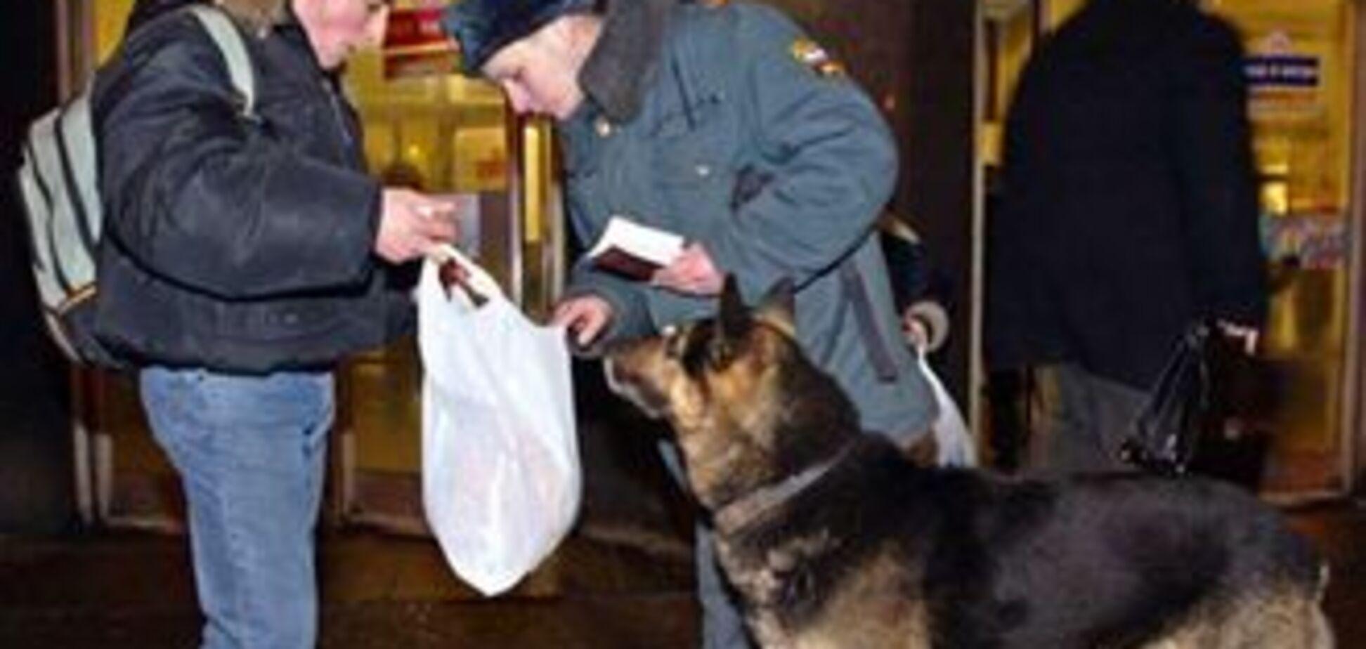Пассажиров московского метро защитят служебные собаки