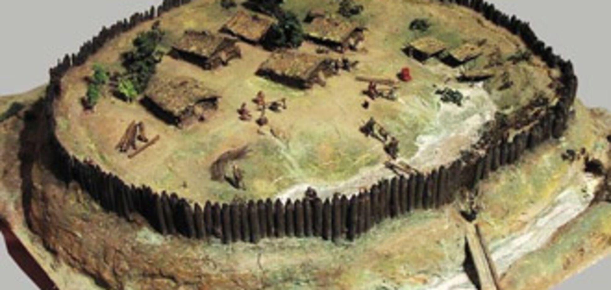 Трипільське поселення віддали під городи і свинарники