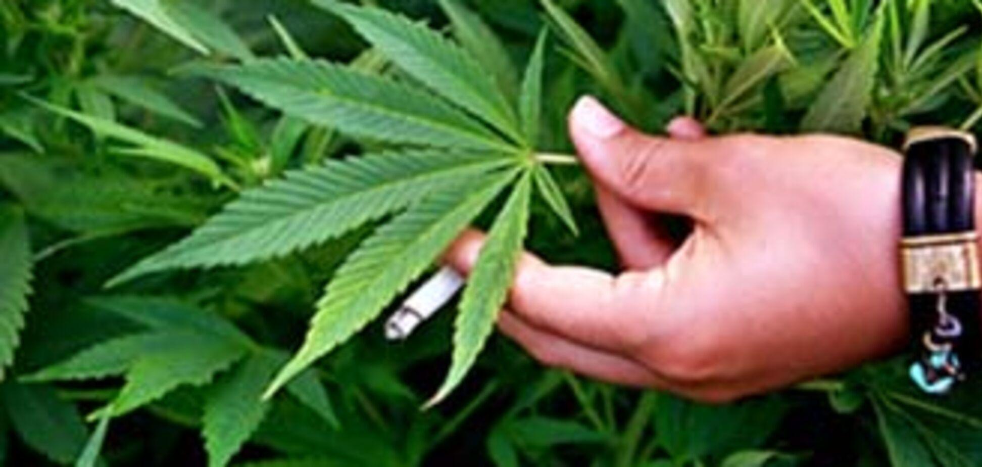 На Прикарпатті 71-річний дідусь продавав наркотики