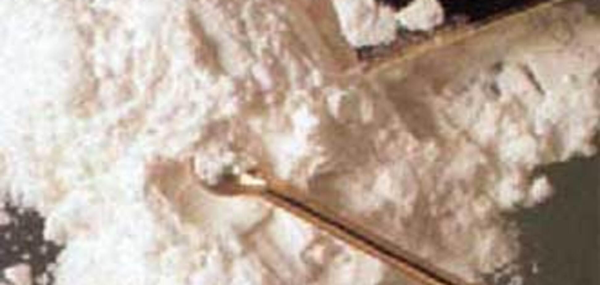 СБУ виявила в Одеському порту півтонни кокаїну