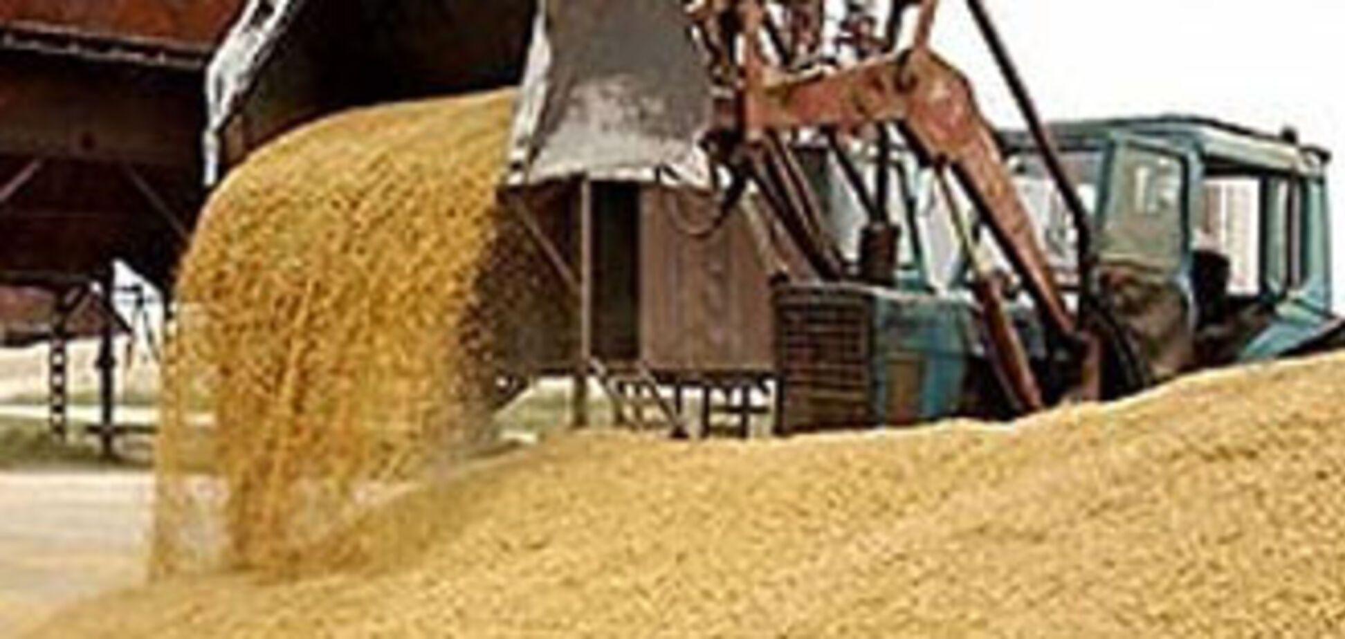 Зернотрейдери перестали закуповувати пшеницю